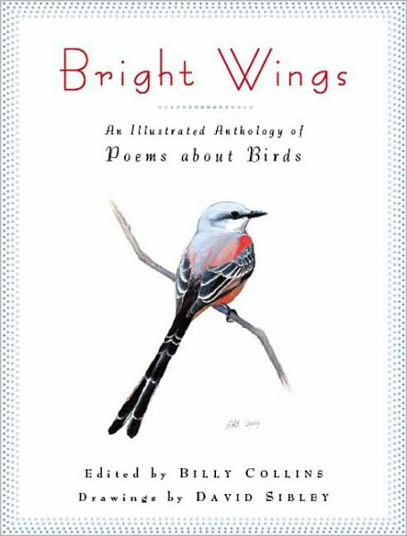 bright_wings_2009